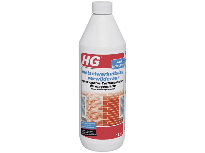 HG metselwerkuitslagverwijderaar 1l