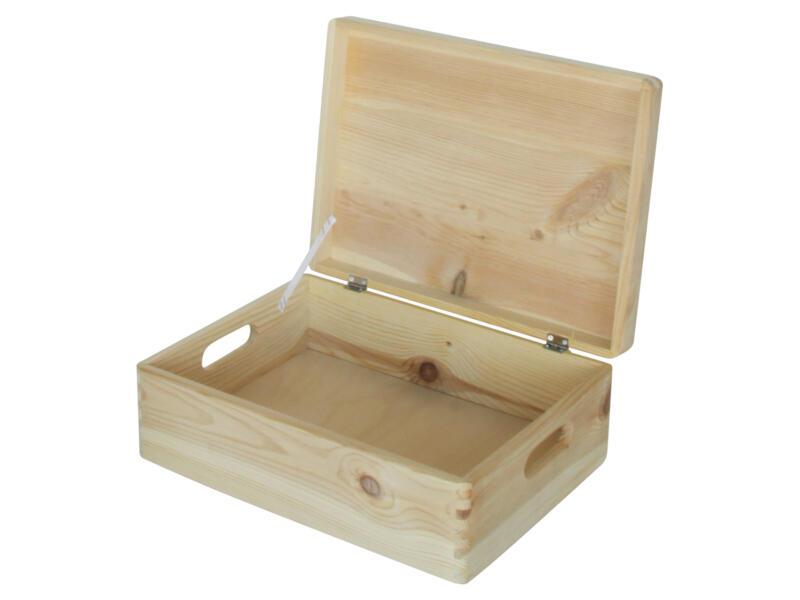 Practo Home opbergbox 40x30x15 cm hout den met deksel