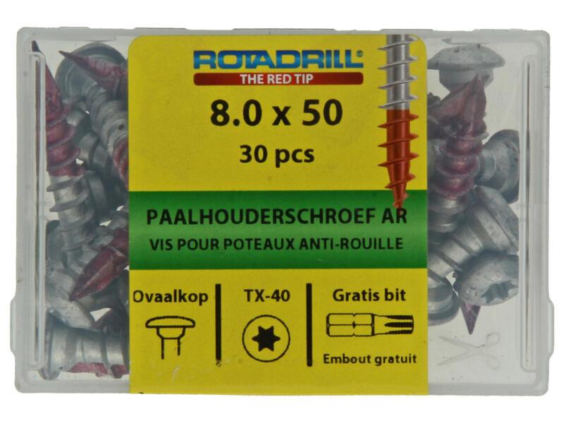 Rotadrill paalhouderschroef TX40 50x8 mm AR-coating 30 stuks