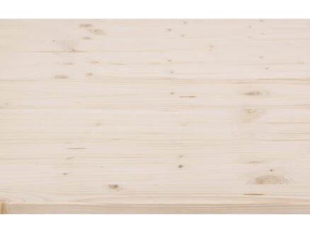 CanDo panneau de menuiserie épicéa 200x60 cm 18mm