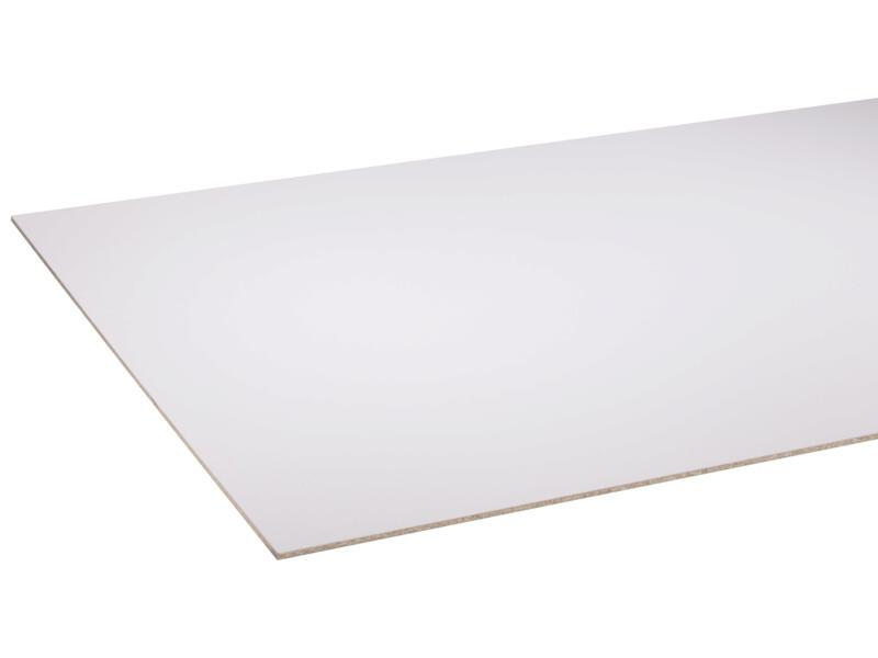 StoreMax panneau porte de placard 101x255 cm 8mm blanc frigo