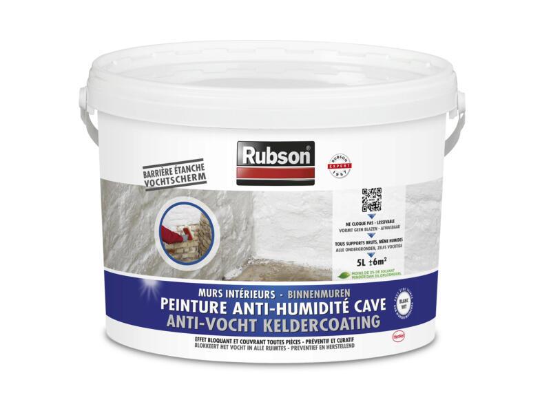 Rubson peinture anti-humidité cave 5l