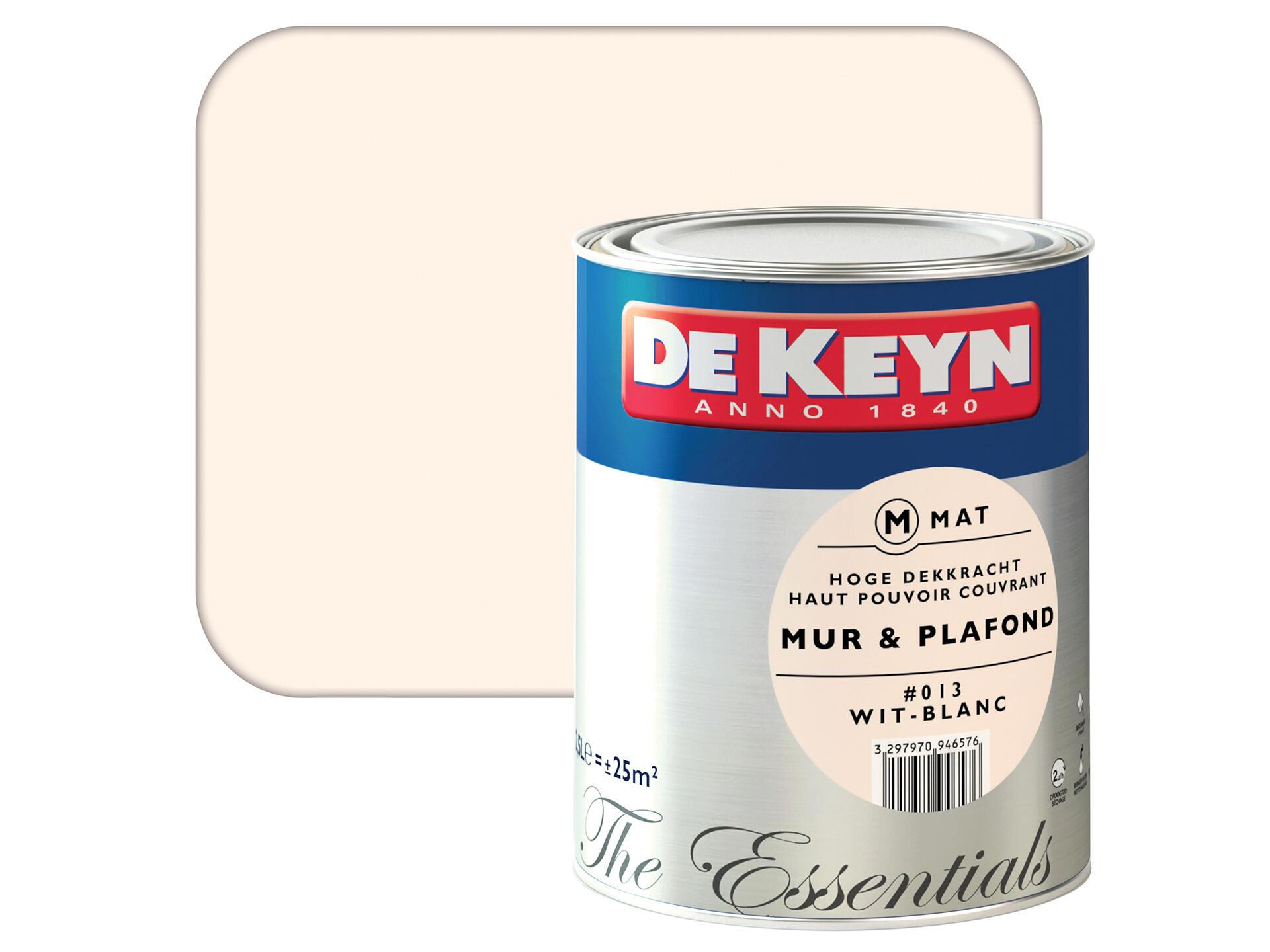 Peinture Blanc Brillant Mur Et Plafond de keyn peinture mur & plafond satin 2,5l blanc #013
