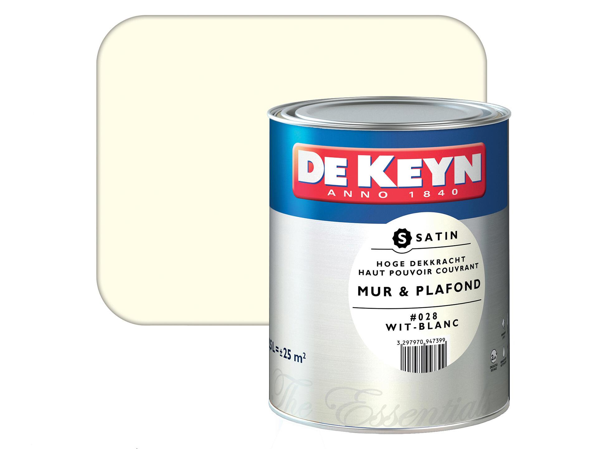 Peinture Blanc Brillant Mur Et Plafond de keyn peinture mur & plafond satin 2,5l blanc #028