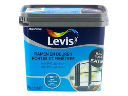 Levis peinture portes & fenêtres satin 0,75l gris anthracite