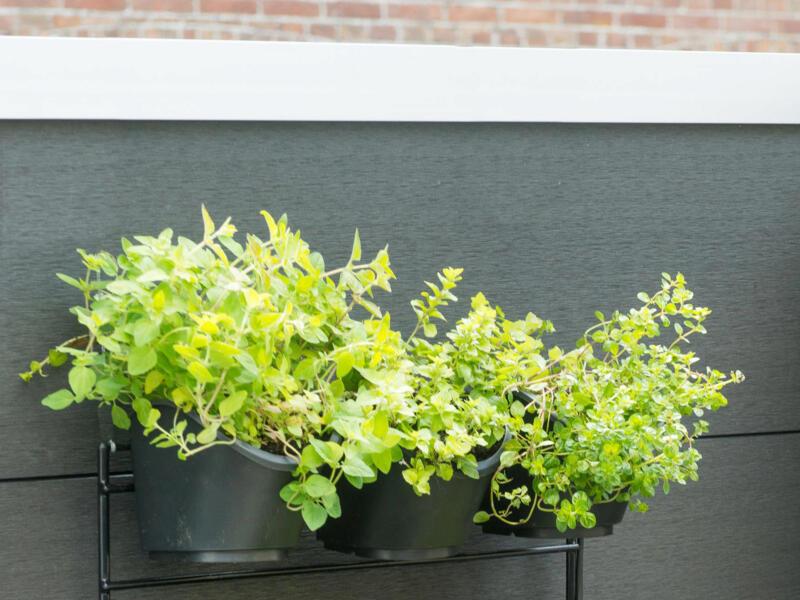 Ubbink pots à fleurs pour jardin vertical 15,5x13,5 cm 3 pièces