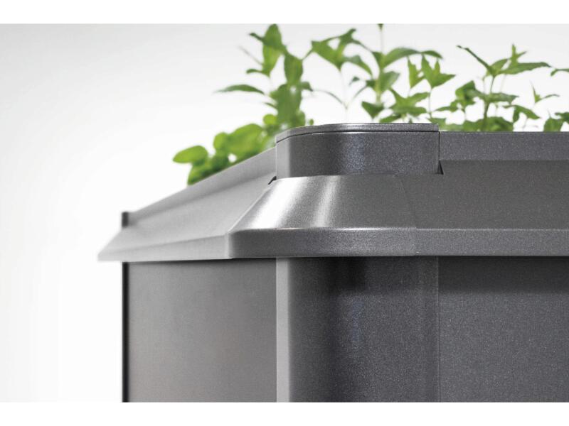 Biohort rebord anti-limaces pour potager 60x207 cm gris foncé métallique