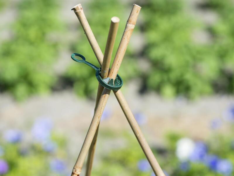 Ubbink ring voor plantstokken 11mm 10 stuks