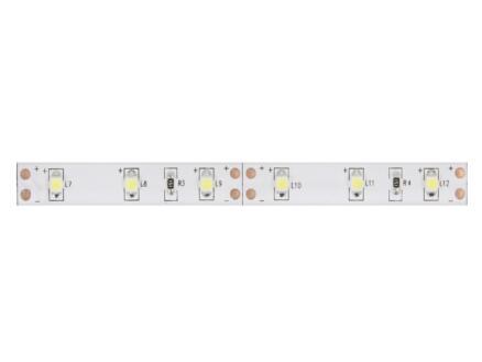 Vellight ruban LED 15,7W 5m blanc froid + alimentation