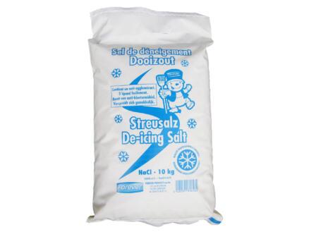 Forever sel de déneigement 10kg