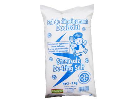 Forever sel de déneigement 5kg