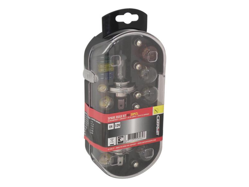 Carpoint set d'ampoules H4 60/55W 30 pièces