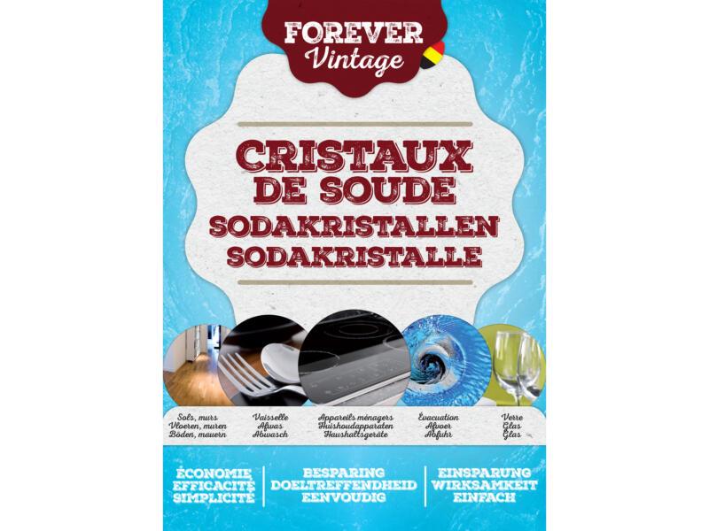 Forever sodakristallen 1,25kg