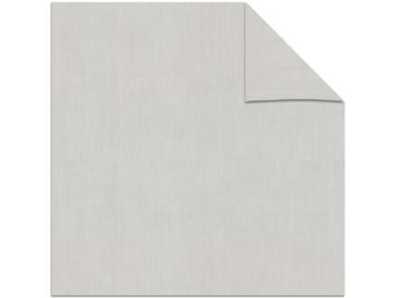 Decosol store enrouleur transparent 210x190 cm gris clair