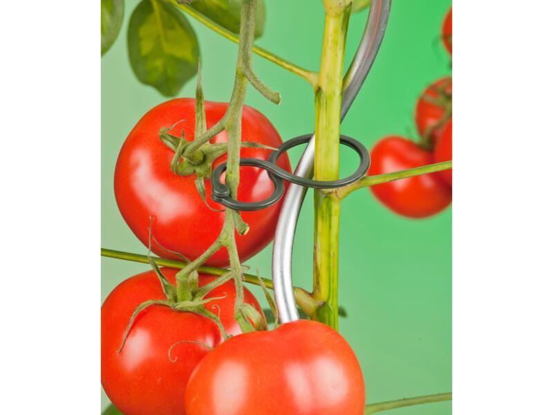 Ubbink tomatenplantring dubbele ring 30/20mm 25 stuks
