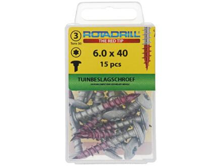 Rotadrill tuinbeslagschroef TX30 40x6 mm 15 stuks