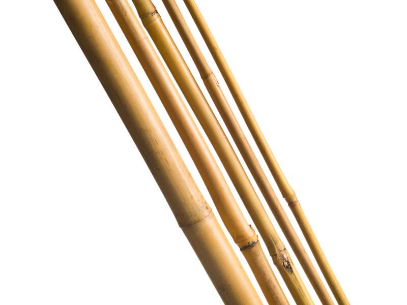 Nature tuteur bambou 180cm 3 pièces