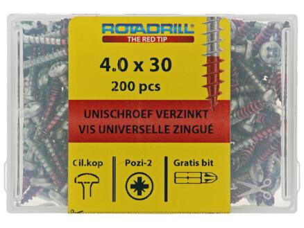 Rotadrill universele schroeven PZ2 4x30 mm staal 200 stuks