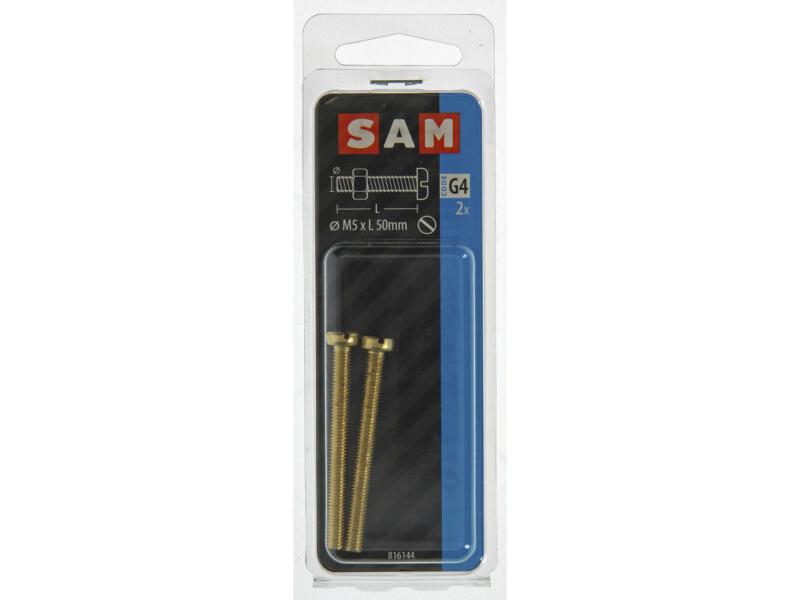 Sam vis métal avec écrou 50x5 mm laiton 2 pièces