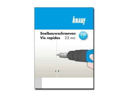 Knauf vis pour plaques de plâtre 3,5x25 mm 250 pièces