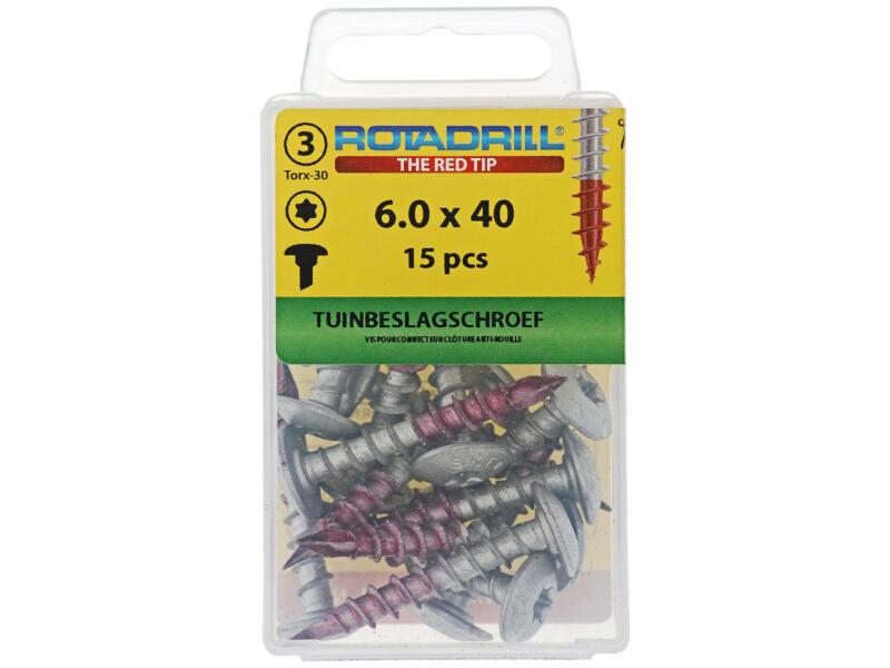 Rotadrill vis pour quincaillerie de jardin TX30 40x6 mm 15 pièces