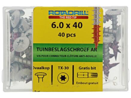 Rotadrill vis pour quincaillerie de jardin TX30 40x6 mm 40 pièces