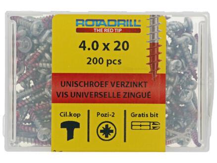 Rotadrill vis universelles PZ2 4x20 mm acier 200 pièces