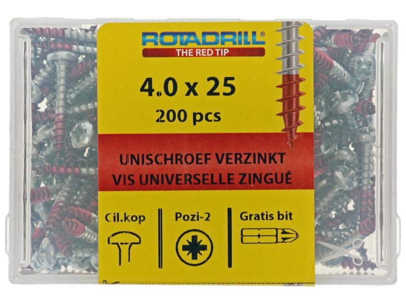 Rotadrill vis universelles PZ2 4x25 mm acier 200 pièces