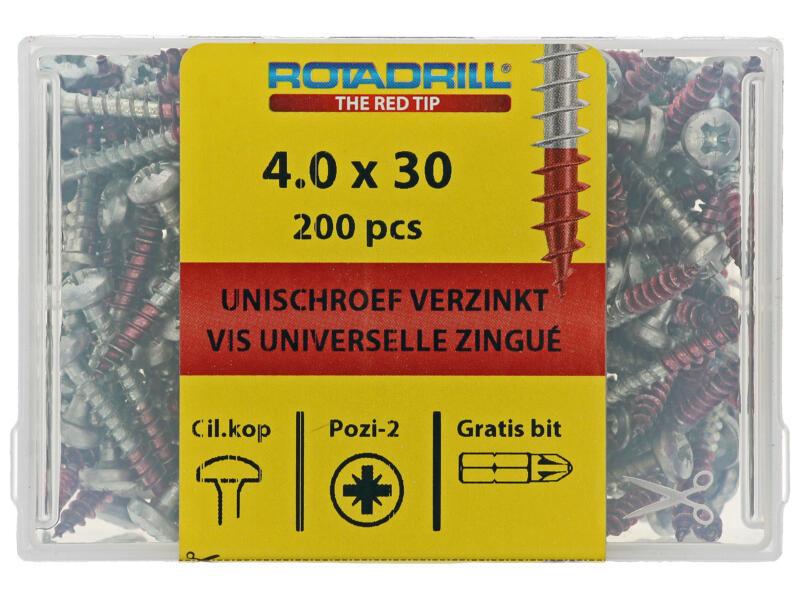 Rotadrill vis universelles PZ2 4x30 mm acier 200 pièces