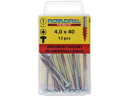 Rotadrill vis universelles PZ2 4x40 mm acier 13 pièces