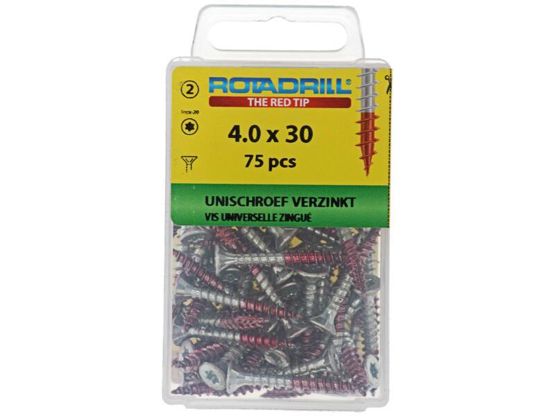 Rotadrill vis universelles TX20 30x4 mm zingué 75 pièces